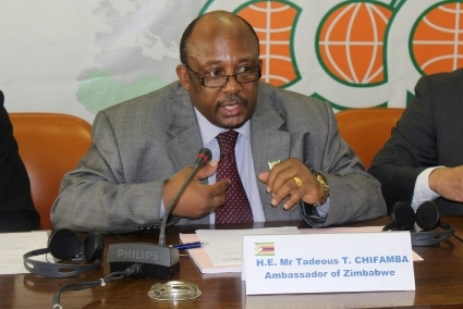 Zimbabwe's new ambassador to the United States, Tadeus Chifamba, has so far represented his country to European institutions.