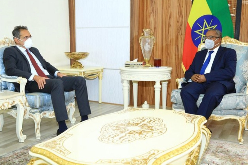 EU Ambassador to Addis Ababa Johan Borgstam and Ethiopian Minister for Foreign Affairs Gedu Andargachew.